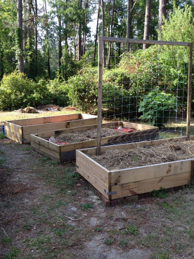 Raised Garden Beds in Aiken